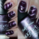 Sally Hansen Magnetic – 902 Polar Purple